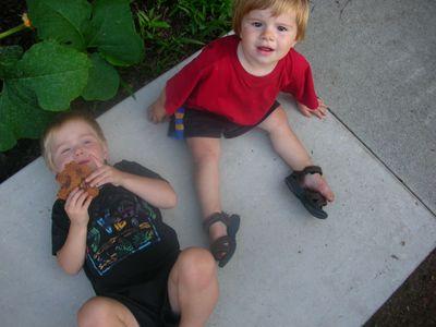 Backyard_scenes_july_2005_16