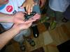 Bug_fair_2006_017